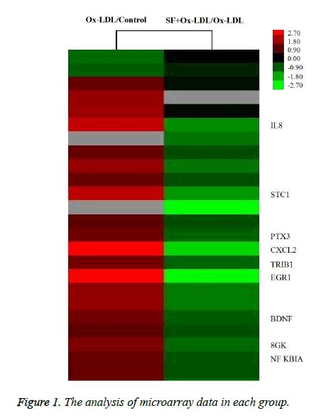 biomedres-analysis-microarray
