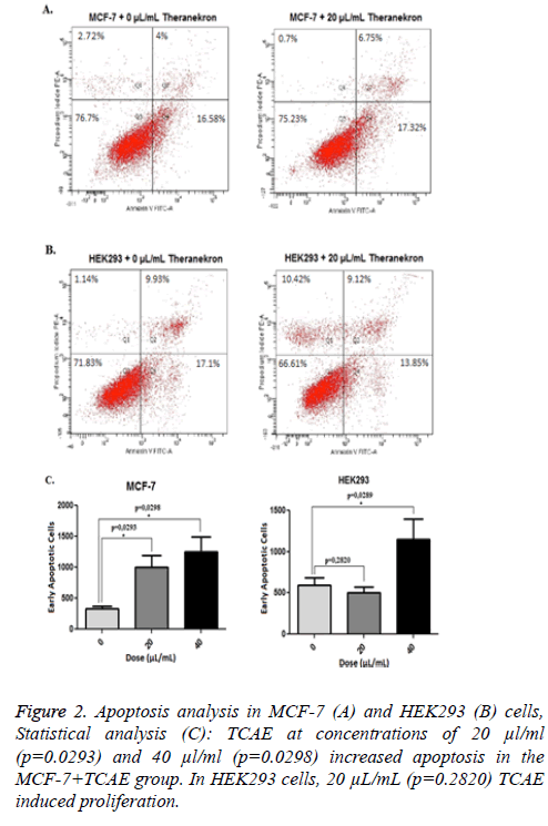 biomedres-apoptosis-proliferation