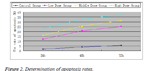 biomedres-apoptosis-rates