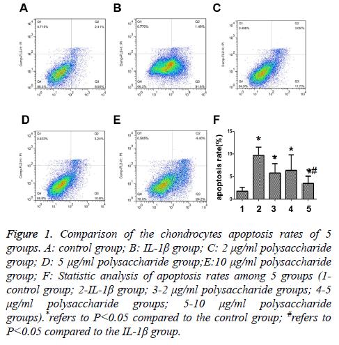 biomedres-apoptosis-rates