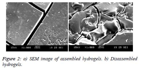 biomedres-assembled-hydrogels