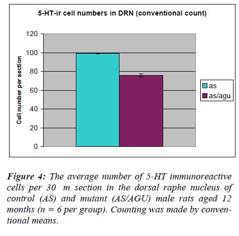 biomedres-average-immunoreactive-cells
