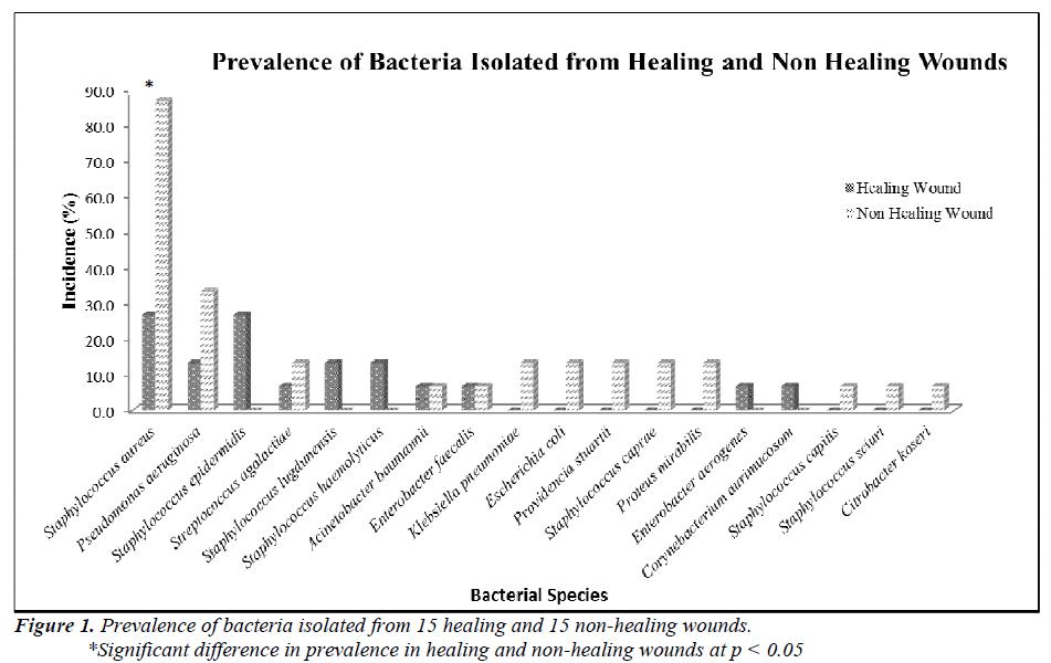 biomedres-bacteria-healing-non-healing-wounds