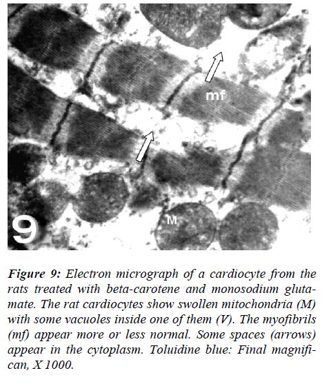 biomedres-beta-carotene-monosodium