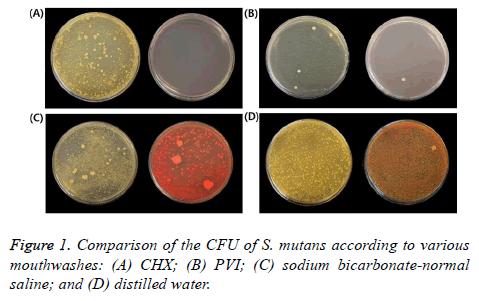 biomedres-bicarbonate-normal