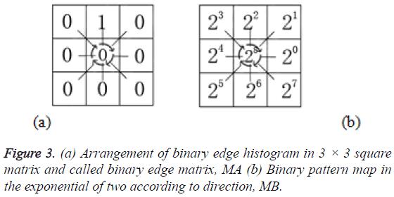 biomedres-binary-edge-histogram