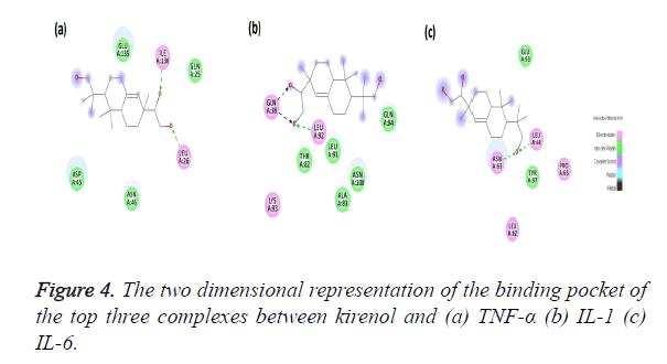 biomedres-binding-pocket