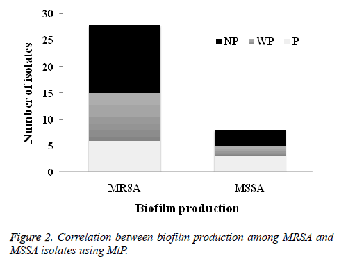 biomedres-biofilm-production