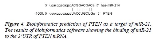 biomedres-bioinformatics-software