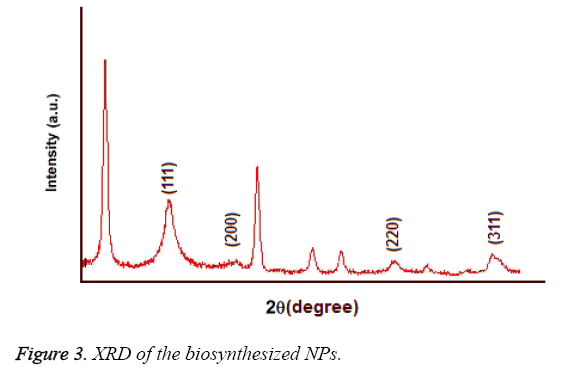 biomedres-biosynthesized-NPs