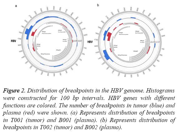 biomedres-breakpoints-HBV-genome