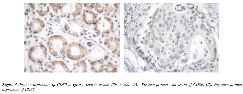 biomedres-cancer-tissues