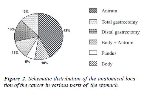 biomedres-cancer-various-parts
