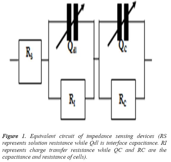biomedres-capacitance-resistance-cells