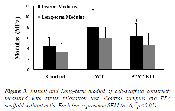 biomedres-cell-scaffold