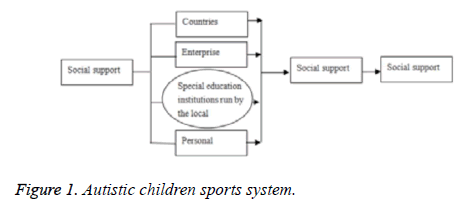 biomedres-children-sports-system