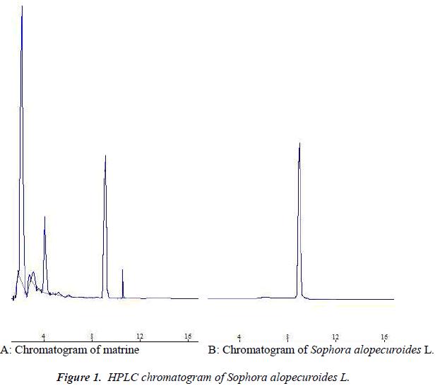 biomedres-chromatogram-Sophora-alopecuroides