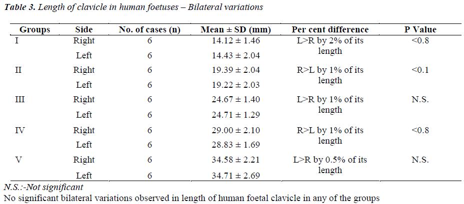 biomedres-clavicle-human-foetuses