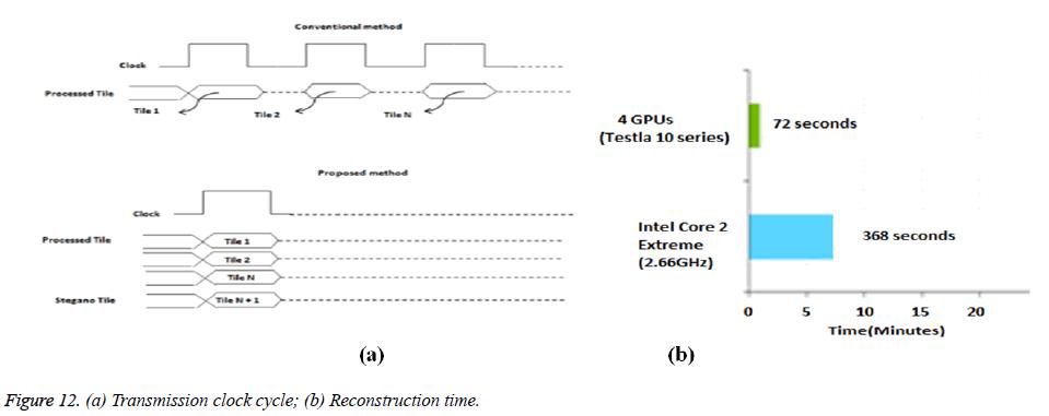 biomedres-clock-cycle