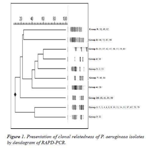biomedres-clonal-relatedness