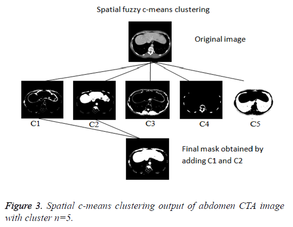 biomedres-clustering-output
