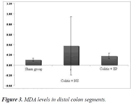biomedres-colon-segments