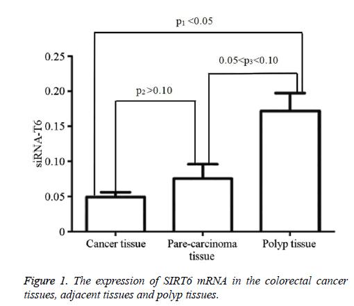 biomedres-colorectal-cancer