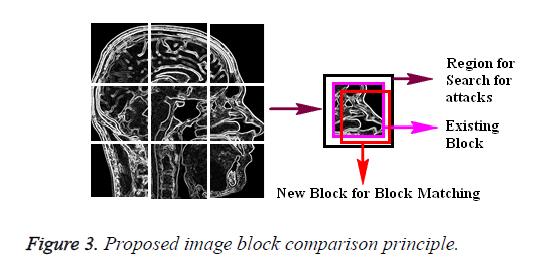 biomedres-comparison-principle