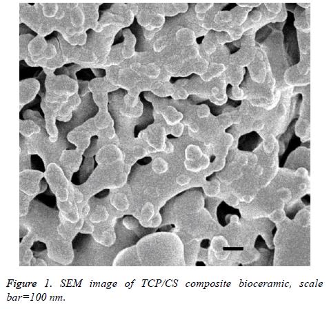 biomedres-composite-bioceramic