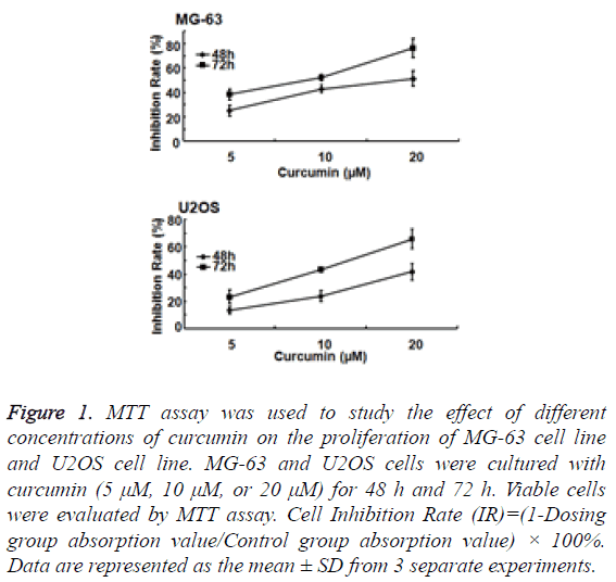 biomedres-concentrations-curcumin-proliferation