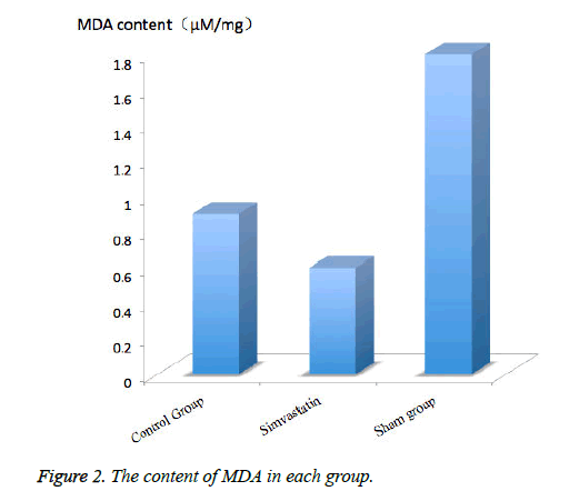 biomedres-content-MDA
