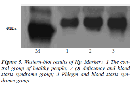 biomedres-control-group-healthy-people