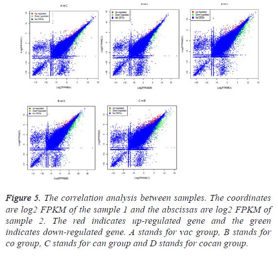 biomedres-correlation-analysis