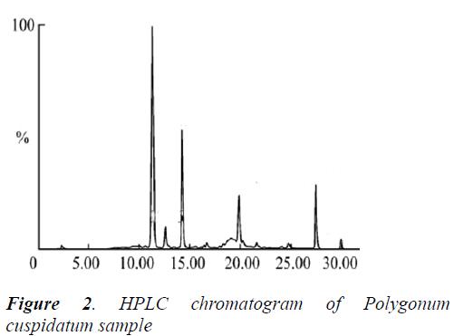 biomedres-cuspidatum-sample