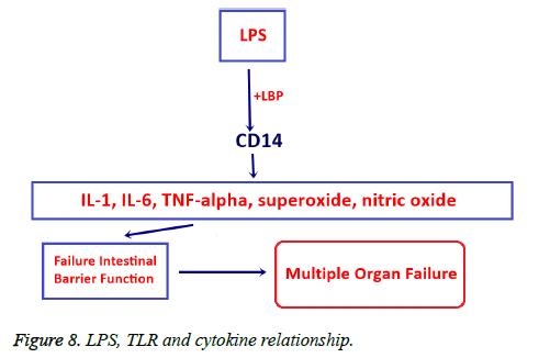 biomedres-cytokine-relationship