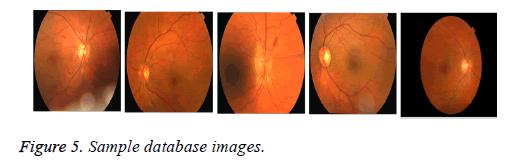 biomedres-database-images