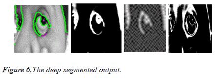 biomedres-deep-segmented