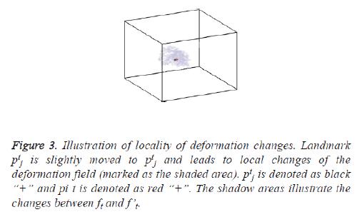 biomedres-deformation-field