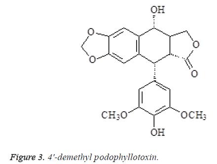 biomedres-demethyl-podophyllotoxin