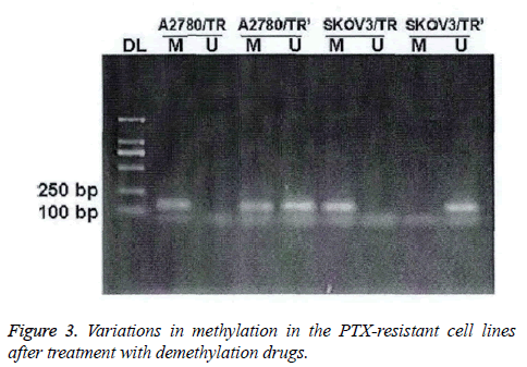 biomedres-demethylation-drugs