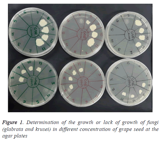 biomedres-determination-growth