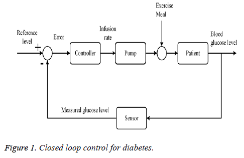 biomedres-diabetes-loop