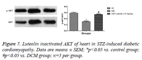 biomedres-diabetic-cardiomyopathy