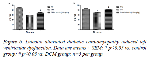 biomedres-diabetic-dysfunction