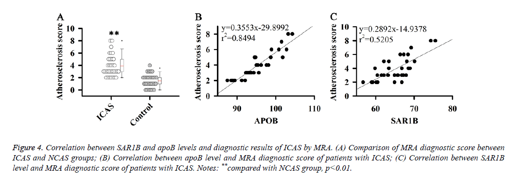 biomedres-diagnostic-score