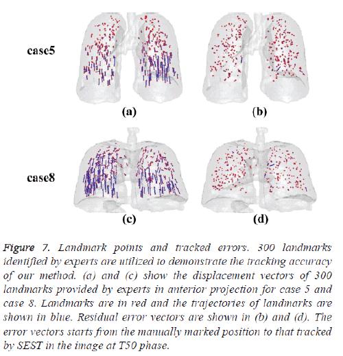 biomedres-displacement-vectors
