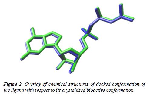 biomedres-docked-bioactive