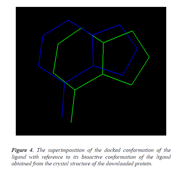 biomedres-docked-conformation