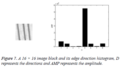 biomedres-edge-direction-histogram