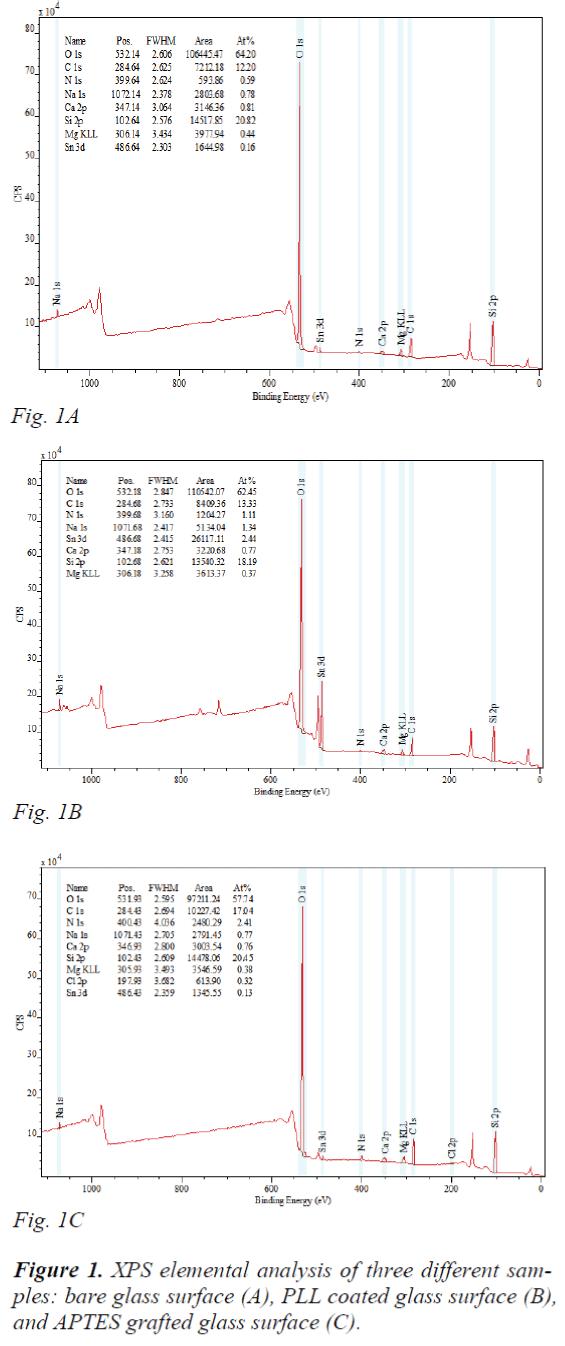 biomedres-elemental-analysis-three-different-samples